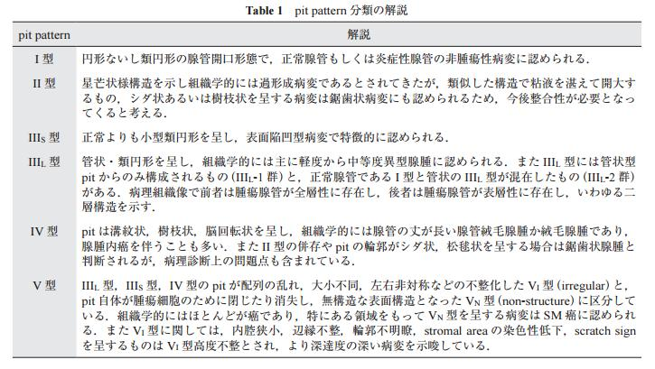 Table 1 pit pattern 分類の解説